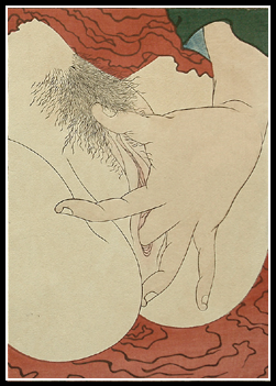 Shunga – Hokusai – Vaginal Close-Up – Young Pine Saplings – c.1912.